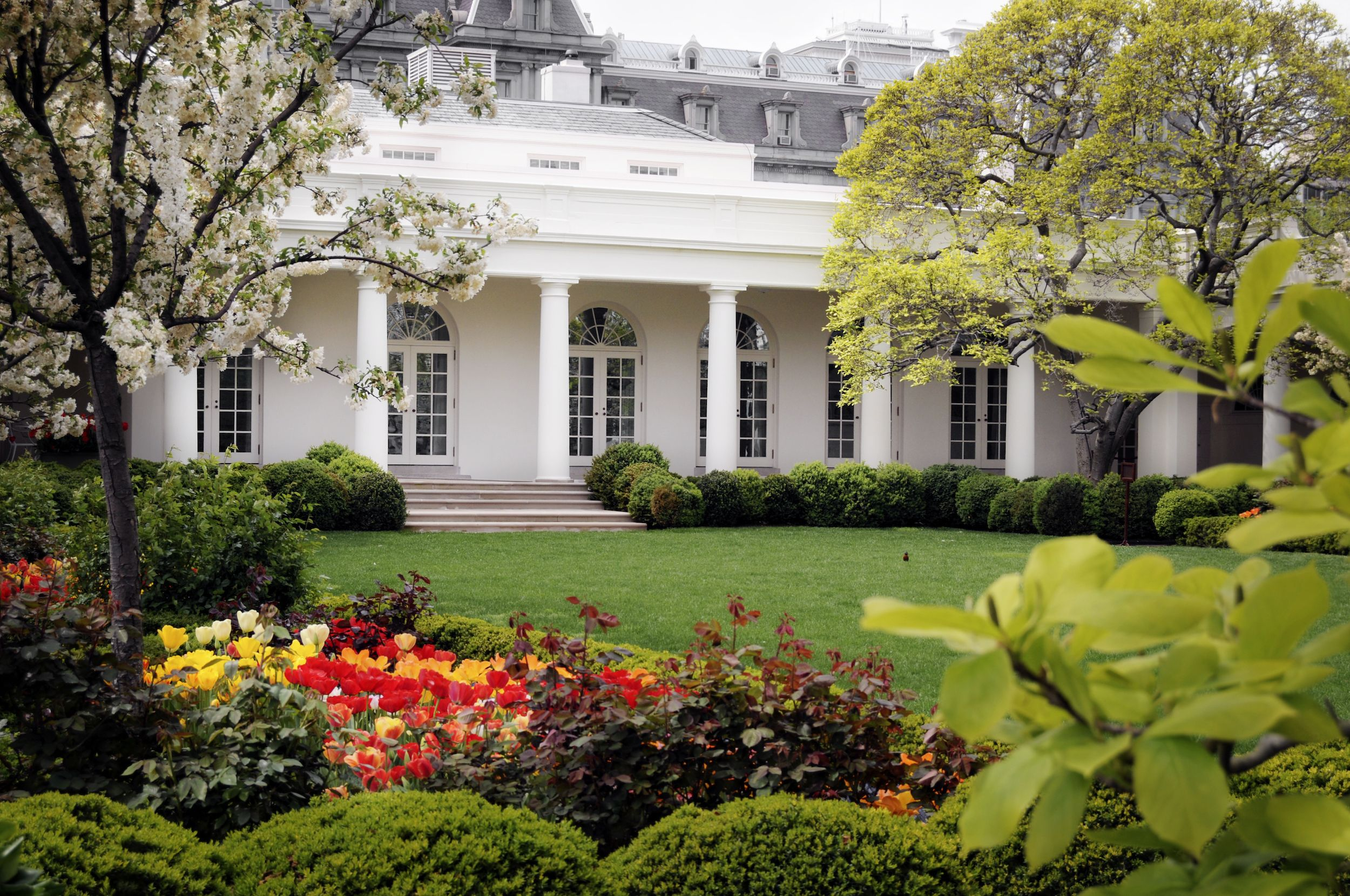All The Presidents Gardens Interesting Facts About The White