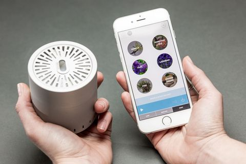 Finger, Electronic device, Product, Skin, Technology, Gadget, Mobile phone, Thumb, Electronics, Portable communications device,