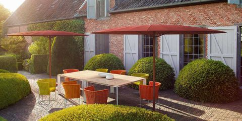 Plant, Window, Shrub, Real estate, House, Garden, Roof, Outdoor table, Hedge, Groundcover,