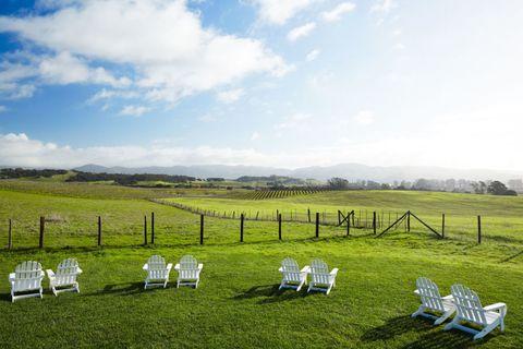 Natural landscape, Plain, Furniture, Grassland, Land lot, Ecoregion, Outdoor furniture, Pasture, Meadow, Folding chair,