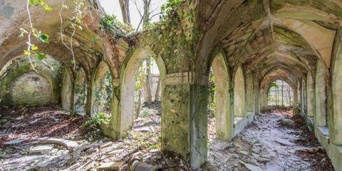 Arch, Ruins, Arcade, Non-vascular land plant, Moss, Vault, Medieval architecture, Woodland, Algae,