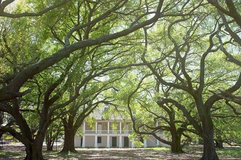 "<p>One of the few Southern plantations to focus on the slave experience, The Whitney Plantation uses hundreds of first-person narratives to paint a picture of what life was really like for Louisiana's enslaved population. </p><p>A guided tour of the property takes visitors through the historic Antioch Baptist Church, the slave quarters, and the Big House, focusing on the lives of the men and women who lived and worked there.<span class=""redactor-invisible-space"" data-verified=""redactor"" data-redactor-tag=""span"" data-redactor-class=""redactor-invisible-space""></span><br></p><p>For more information, visit <a href=""http://www.whitneyplantation.com/"" target=""_blank"">whitneyplantation.com</a>. </p>"