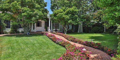 Plant, Shrub, Garden, Petal, Landscape, Flower, Real estate, Groundcover, Lawn, Walkway,