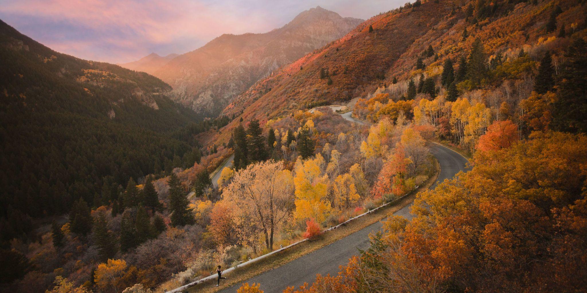 23 Amazing Photos Of Autumn Leaves