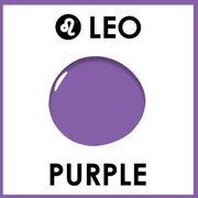 Purple, Violet, Room, Interior design, Floor, Table, Furniture, Lavender, Ceiling, Magenta,