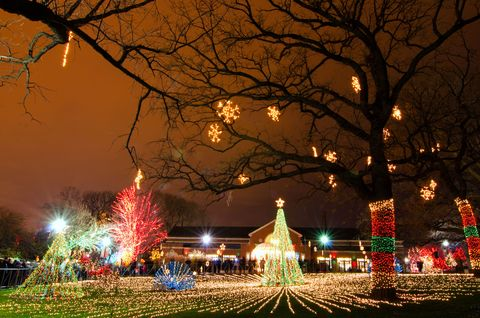 Christmas In Chicago.Best Things To Do In Chicago During The Holidays Chicago