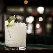 Drink, Liquid, Citrus, Classic cocktail, Cocktail, Alcoholic beverage, Distilled beverage, Glass, Drinkware, Lemon-lime,