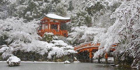 Kyoto in winter.