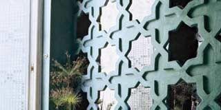 Green, Property, Pattern, Photograph, Leaf, White, Wall, Black, Grey, World,