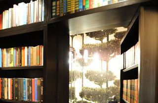 Shelf, Property, Bookcase, Shelving, Publication, Library, Light, Book, Tints and shades, Book cover,