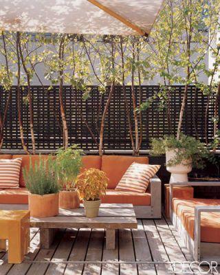 Terrace And Deck Design Pictures - Deck Decorating Photos