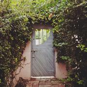 Fixture, Door, Home door, Brick, Building material, Vine, Gate,