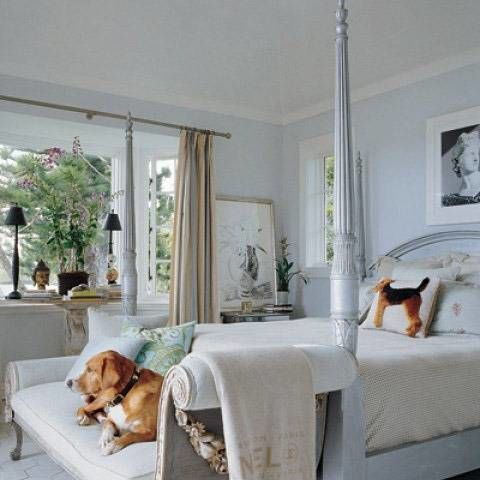 I resolve to never underestimate the power of a chic throw—or beloved dog—to make even a great room better