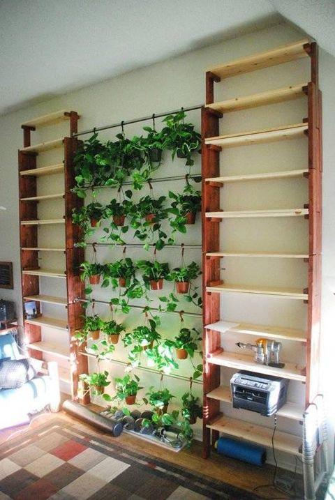 Wood, Interior design, Room, Wall, Flooring, Floor, Shelving, Fixture, Shelf, Interior design,