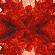 Red, Pattern, Orange, Art, Symmetry, Peach, Illustration, Coquelicot, Cut flowers, Artificial flower,