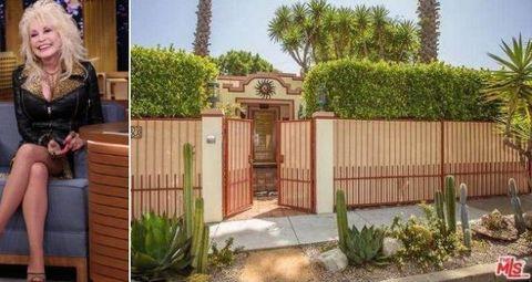 Plant, Property, Shrub, Gate, Jacket, Door, Home fencing, Home door, Fence, Arecales,