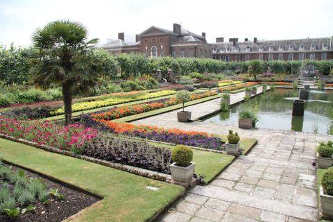 Plant, Garden, Shrub, Botany, Water feature, Hedge, Park, Landscaping, Botanical garden, Groundcover,