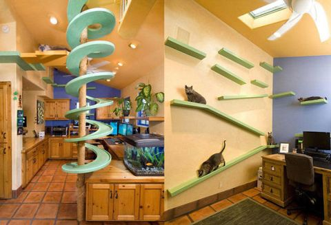 What Your Home Would Look Like If You Let Your Cat Play Decorator