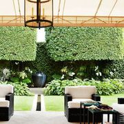 Plant, Shrub, Garden, Flowerpot, Shade, Outdoor furniture, Light fixture, Coffee table, Outdoor table, Patio,
