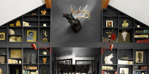 Interior design, Furniture, Room, Shelf, Table, Invertebrate, Shelving, Insect, Couch, Arthropod,