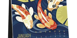 10 Calendars to Ring in the New Year
