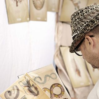 san francisco antique fair man looking at vintage sea creature prints