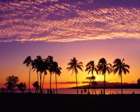 ELLE DECOR Goes to Honolulu