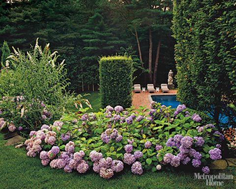 A Designer's Garden