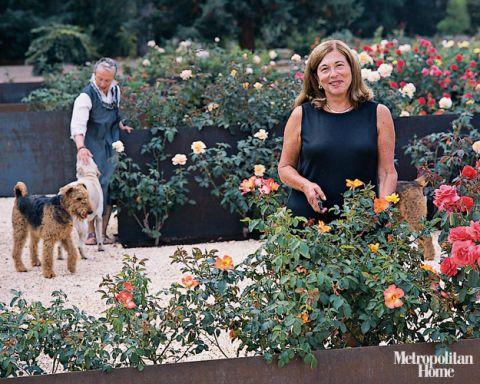 A Modernist Organic Garden