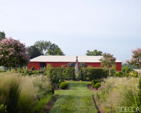 Cultivating New Ground: Ben Page's Tennessee Garden