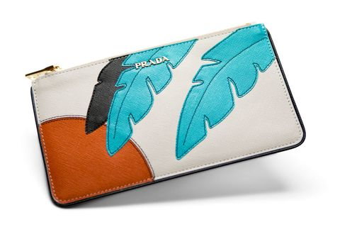 Teal, Orange, Turquoise, Aqua, Feather, Electric blue, Tan, Natural material, Wallet, Everyday carry,