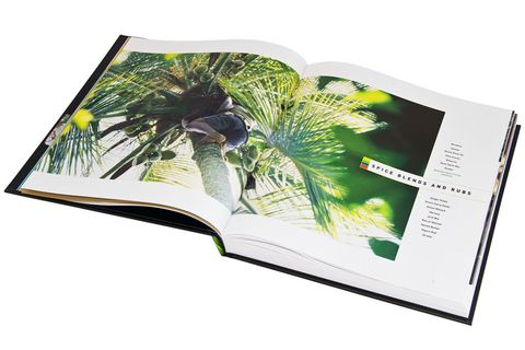 Leaf, Arecales, Botany, Terrestrial plant, Art, Book, Illustration, Graphics, Graphic design, Palm tree,