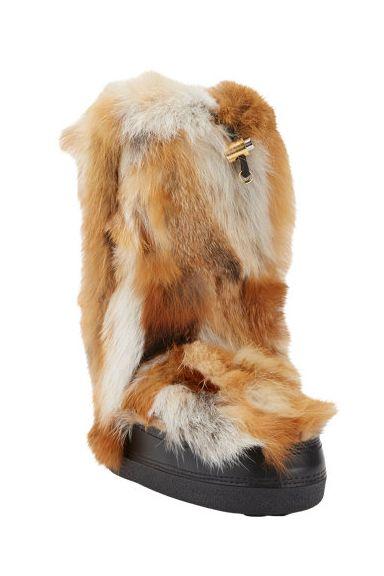 Brown, Fawn, Carnivore, Beige, Liver, Fur, Tan, Snout, Terrestrial animal, Natural material,