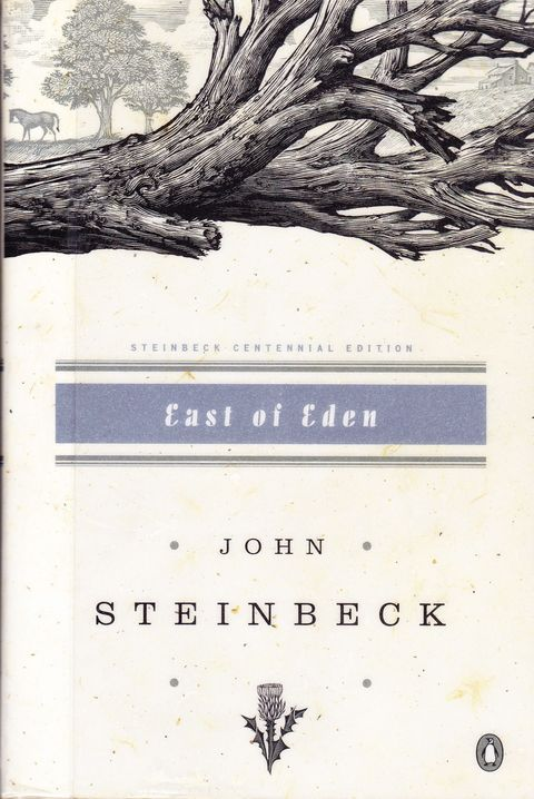 <em>East of Eden </em>by John Steinbeck tells the sprawling, inter-generational story of the Trask and Hamilton families while mirroring Adam and Eve's fall from grace against the backdrop of California's lush Salinas Valley. Just sumptuous.