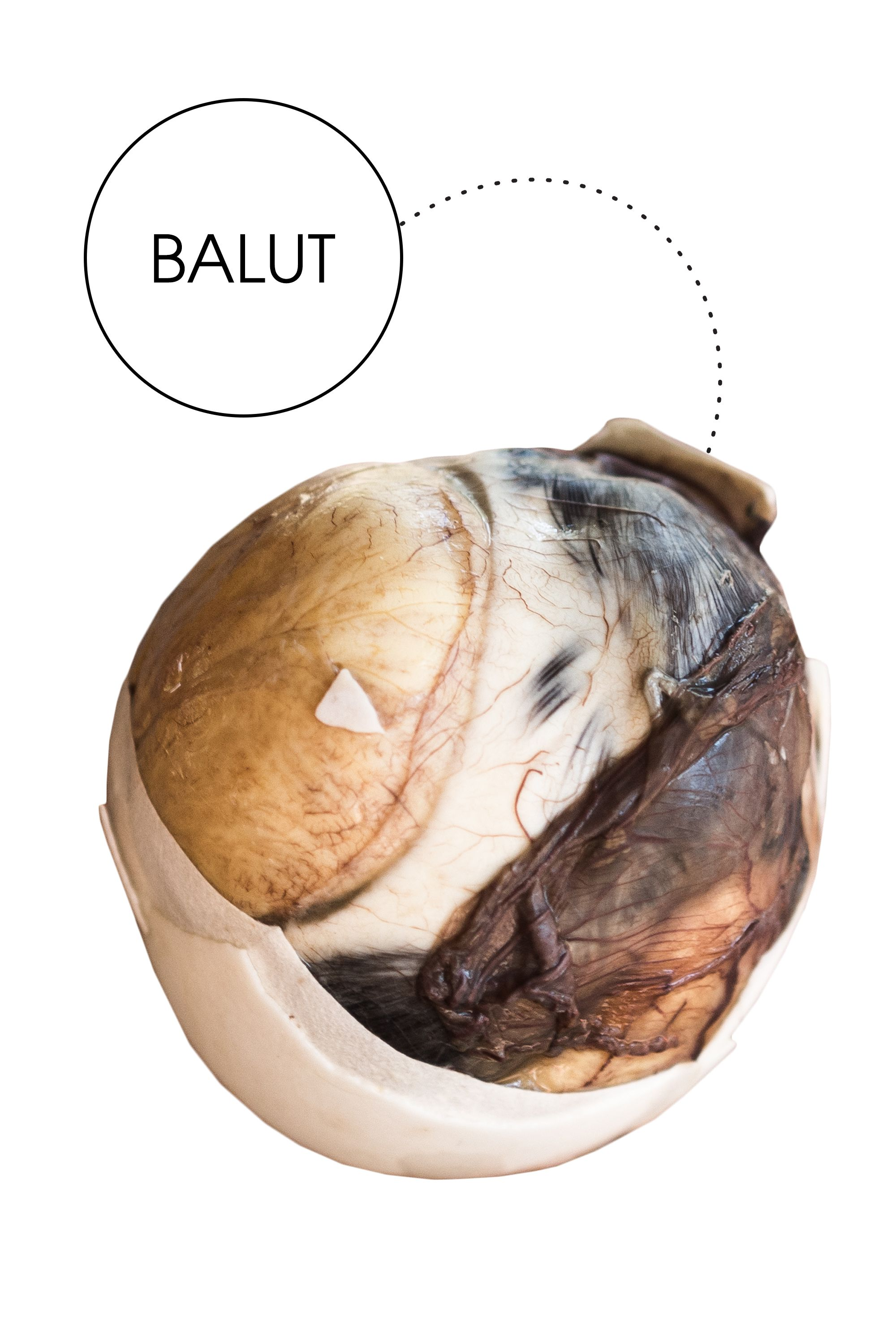 "<em>This popular Filipino street food</em>—<em>which is technically a developing duck embryo eaten from its shell</em>—<em>is supposedly...sexy?</em>  ""I'd like to think I'm a pretty adventurous eater, so I was up for the challenge when I was tasked with trying balut. I came up with an elaborate plan to test balut's supposed powers as an aphrodisiac on my unsuspecting girlfriend. I didn't tell her anything about my true intentions because what better way to experiment than to just go on a date? As our plates came out, all we got was a spoon and what looked to be an ordinary hard-boiled egg. (My girlfriend was confused as to why I ordered a $5 'hard boiled egg.' She still had no idea what we were really in for.) I'm not going to lie—I was pretty nervous. I've eaten chicken feet before, but something about eating an embryo just sounds scary. However, the special method of eating the balut added some excitement to the evening. First you tap the bottom of the egg's fat side until it cracks open. Next you basically take a shot of the liquid inside the shell, which to my surprise was not that bad. It tasted like a mix of chicken broth and egg. Then it all ends with the embryo. At this point my girlfriend was freaking out and yelling at me for ordering her a 'dead duck,' but eventually I convinced her to try it with me. Despite thinking I would be disgusted by the experience, I didn't feel any different after it was over. All in all, we had a lot of fun trying a new food, which ultimately set the scene for a 'romantic' night."""