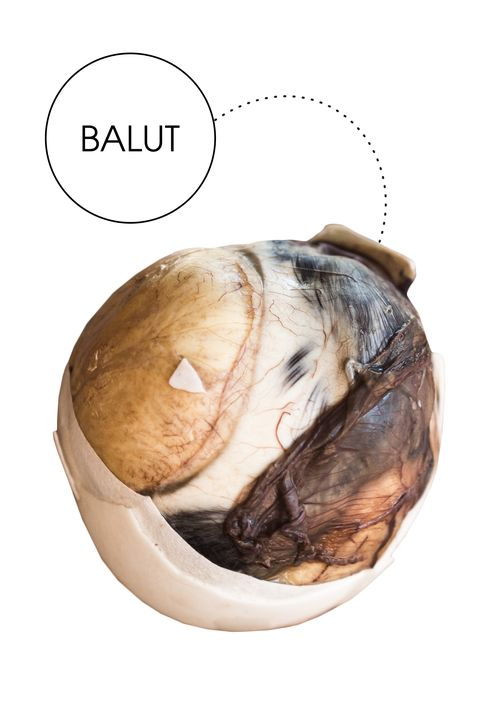 """<em>This popular Filipino street food</em>—<em>which is technically a developing duck embryo eaten from its shell</em>—<em>is supposedly...sexy?</em>  """"I'd like to think I'm a pretty adventurous eater, so I was up for the challenge when I was tasked with trying balut.&nbsp;I came up with an elaborate plan to test balut's supposed powers as an aphrodisiac on my unsuspecting girlfriend. I didn't tell her anything about my true intentions because what better way to experiment than to just&nbsp;go on a date?&nbsp;As our plates came out, all we got was a spoon and what looked to be an ordinary hard-boiled egg. (My girlfriend was confused as to why&nbsp;I&nbsp;ordered a $5 'hard boiled egg.' She still had no idea what we were really in for.)&nbsp;I'm not going to lie—I was pretty nervous. I've eaten chicken feet before, but something about eating an embryo just sounds scary. However, the special method of eating the balut added some excitement to the evening. First you tap the bottom of the egg's fat side until it cracks open. Next you basically take a shot of the&nbsp;liquid inside the shell, which to my surprise was not that bad. It tasted&nbsp;like a&nbsp;mix of chicken broth and egg. Then it all ends with the embryo.&nbsp;At this point my girlfriend was freaking out and yelling at me for ordering her a 'dead duck,' but&nbsp;eventually I convinced her to try it with me. Despite thinking I would be disgusted by the experience, I didn't feel any different after it was over. All in all, we had a lot of fun trying a new food, which ultimately set the scene for a 'romantic' night."""""""