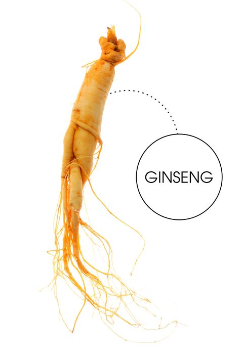 "<em>Often brewed as a tea, ginseng root is said to be one of nature's most potent aphrodisiacs.</em>  ""I tried making a pot of ginseng tea one cuddly morning instead of the usual English Breakfast. It was definitely tingly on my tongue, if not anywhere else, and technically we did end up going back to bed, but I suspect that had as much to do with the snow on the ground as the ginseng root."""