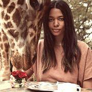 Giraffe, Serveware, Giraffidae, Dishware, Jaw, Adaptation, Coffee cup, Beauty, Tableware, Petal,