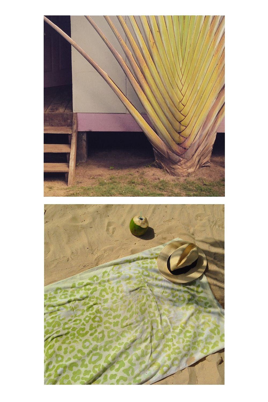 """<a target=""""_blank"""" href=""""http://www.ensuenos-littlecornisland.com/"""">Ensueños</a>, <a target=""""_blank"""" href=""""http://casaiguana.net/cms/"""">Casa Iguana</a>, <a target=""""_blank"""" href=""""http://www.dereksplacelittlecorn.com/"""">Derek's Place</a>, <a target=""""_blank"""" href=""""http://carlitosplacelittlecorn.com/"""">Carlito's Place</a>, and <a target=""""_blank"""" href=""""http://www.littlecornbb.com/"""">Little Corn Beach & Bungalow</a>."""