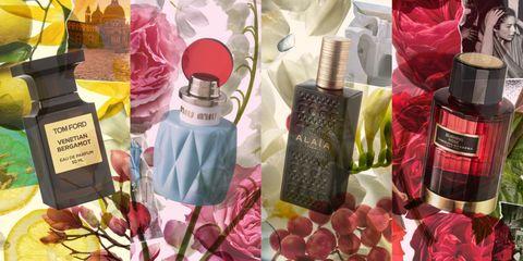 Liquid, Red, Pink, Cosmetics, Purple, Lavender, Peach, Magenta, Lipstick, Tints and shades,