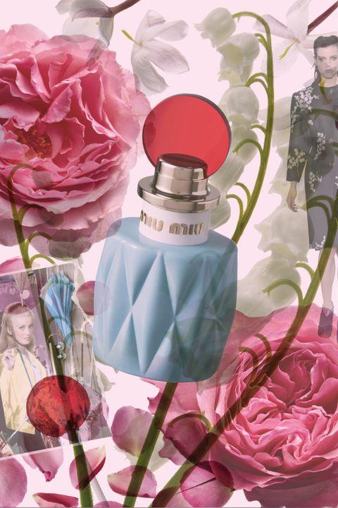 Petal, Flower, Pink, Flowering plant, Perfume, Rose family, Cut flowers, Rose order, Garden roses, Artificial flower,