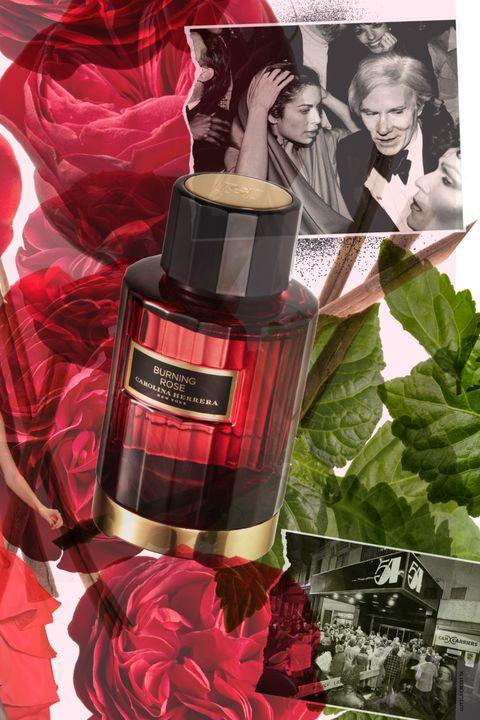 Red, Bottle, Carmine, Distilled beverage, Glass bottle, Hair coloring, Hair care, Cylinder, Herb, Label,