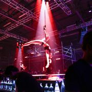 Entertainment, Event, Performing arts, Magenta, Performance, Artist, Purple, Acrobatics, Performance art, Circus,