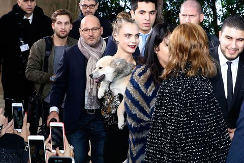Human, Coat, Dog breed, Tie, Fur, Animal product, Natural material, Companion dog, Fur clothing, Beard,