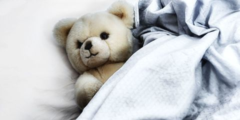 Stuffed toy, Toy, Textile, Comfort, Teddy bear, Bear, Adaptation, Carnivore, Terrestrial animal, Plush,