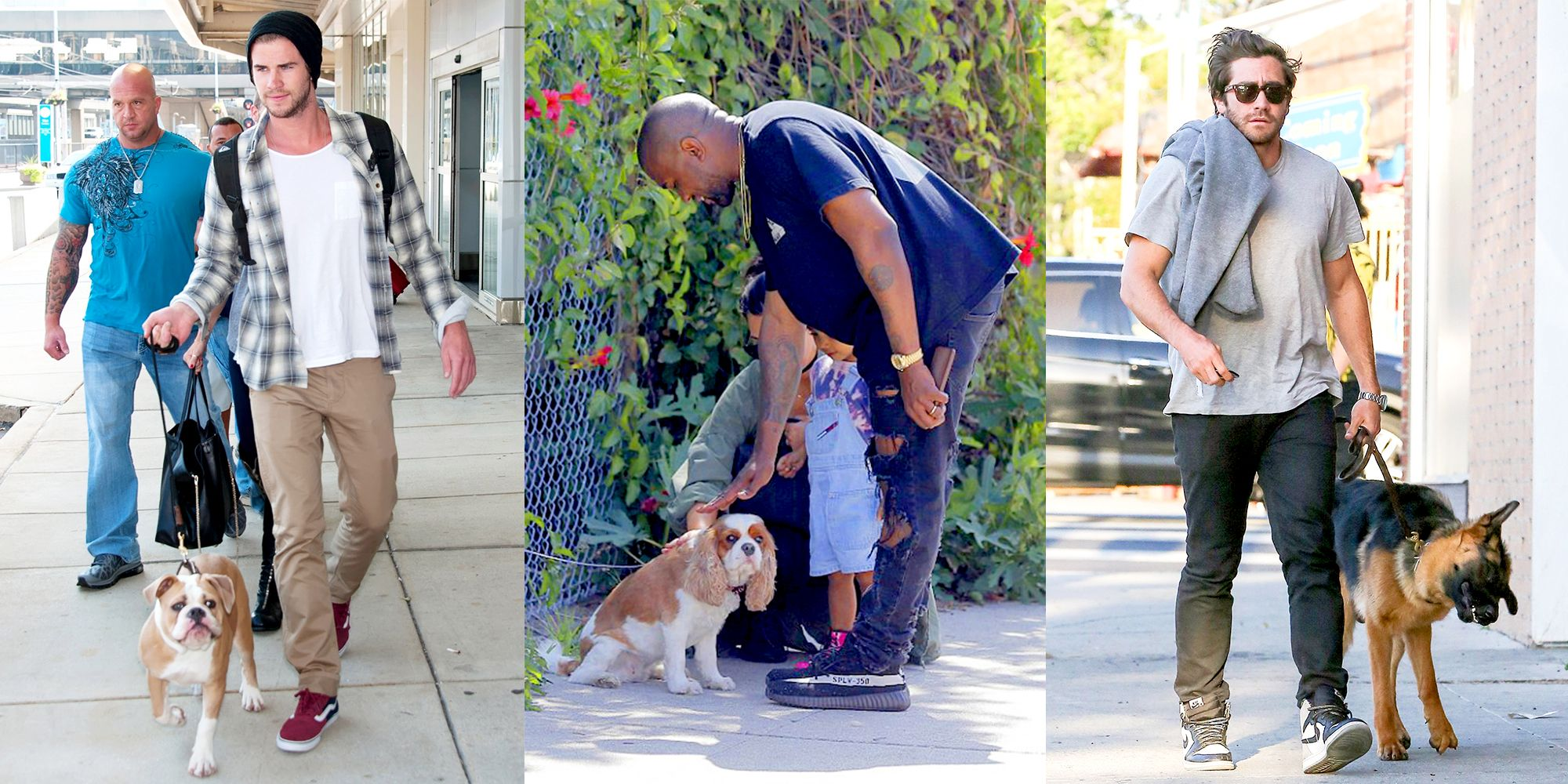 27 Famous Celebs With Their Dogs - Best Celebrity Dog Photos