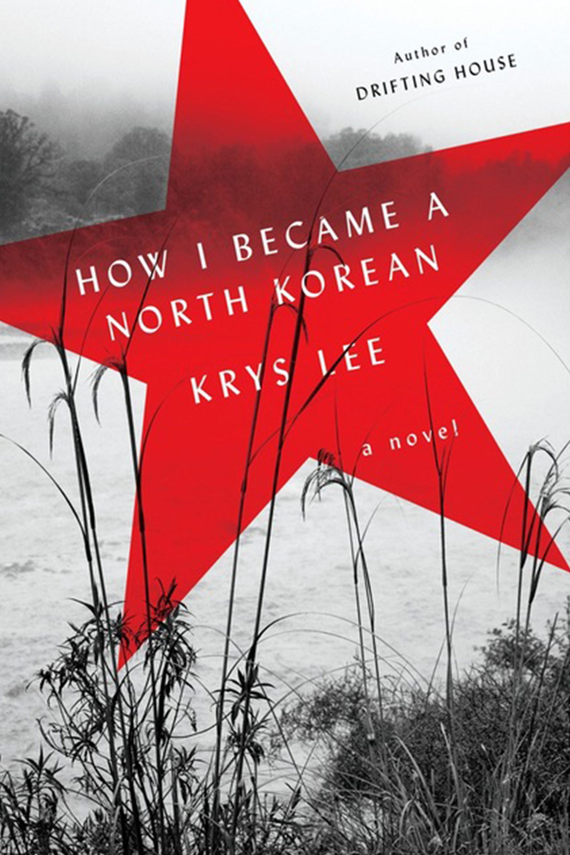 """<p>Krys Lee's debut novel draws on her work with North Korean refugees to tell the stories of Jangmi, a lifelong smuggler; Danny, a Chinese-American teenager; and Yongju, scion of an influential Pyongyang family. The three meet in the borderlands between China and North Korea, and struggle against hunger, slavery, and hopelessness. Lee's story throws light on a place we know little about, in heart-wrenching, lyrical detail. (<a href=""""https://www.amazon.com/How-Became-North-Korean-Novel/dp/0670025682"""">Viking</a>, August 2)</p>"""