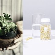 Drinkware, Flowerpot, Herb, Houseplant, Mason jar, Annual plant, Interior design, Food storage containers, Thumb, Chemical compound,