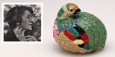 Bird, Organism, Adaptation, Art,