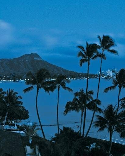 The Grausos' view out to Diamond Head